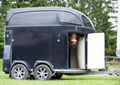 Skal din heste trailer til service